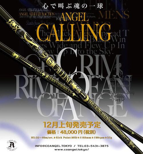 calling_0100.jpg