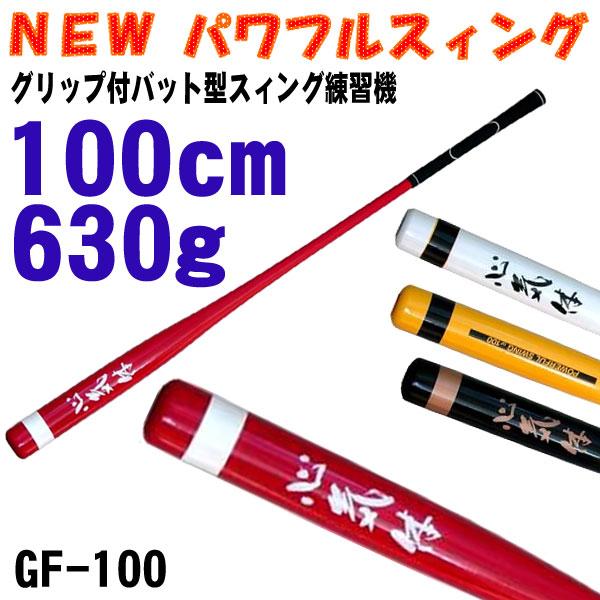 gf-100.jpg