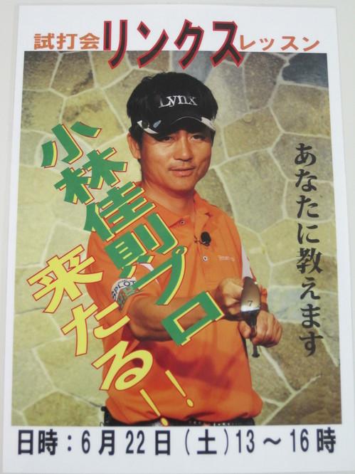IMG_0904.JPGのサムネール画像