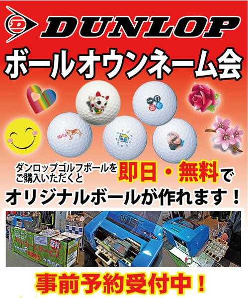 dunlopballmark680.jpg