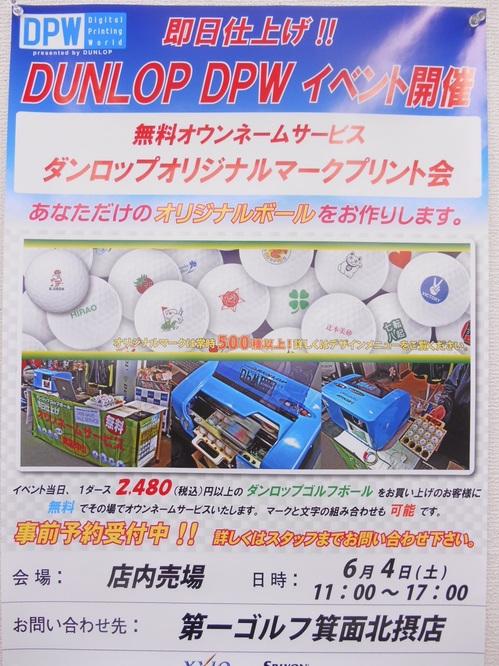 DSCN2461dpw.jpg